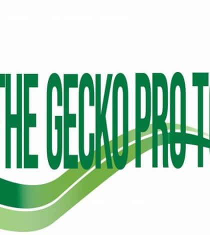 LOGO _the gecko_pro_horiz